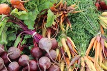 beets-1584454__180